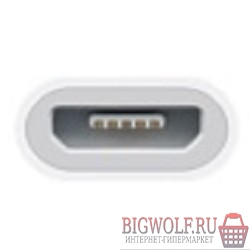 картинка md820zm/a apple lightning to micro usb adapter в интернете магазине BIGWOLF.RU. Фото N2